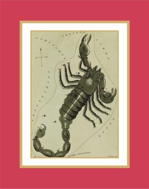 The Sign Scorpio