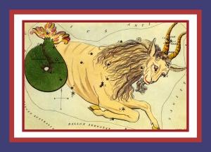 The Sign Capricorn