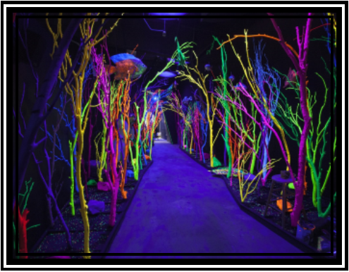 Meow Wolf House of Eternal Returns
